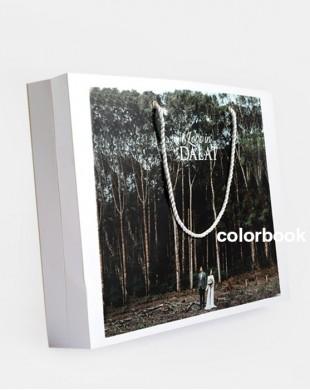 Túi in hình đựng photobook